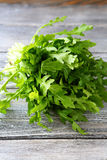 Bunch of fresh arugula on wooden boards Royalty Free Stock Images
