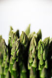 Bunch of fresh asparagus Stock Photos