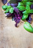 Bunch fresh basil on a wooden background. Aromatic spice Royalty Free Stock Photography