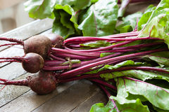Bunch of fresh beets with leaves on the boards Royalty Free Stock Image