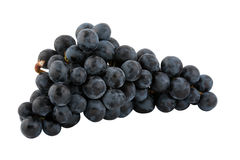 Bunch of fresh blue grapes Royalty Free Stock Photography
