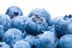 Bunch of fresh blueberries - close up Royalty Free Stock Photos