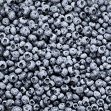 Bunch of fresh blueberries Royalty Free Stock Photos