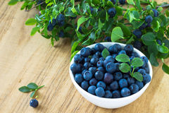 Bunch of fresh blueberry the white bowl on wooden background Stock Images
