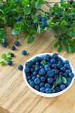 Bunch of fresh blueberry the white bowl on wooden background Stock Image