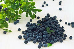 Bunch of fresh blueberry on wooden background Stock Photos