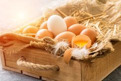 Bunch of fresh brown eggs  in a wooden crate Stock Images