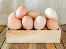 Bunch of fresh brown eggs Royalty Free Stock Image