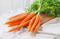 Bunch of fresh carrot. Vegetable with leaves Royalty Free Stock Images