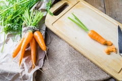 Bunch of fresh carrot on cutting board. Bunch of fresh ripe carrot on wooden cutting board with knife. Healthy food background Royalty Free Stock Image