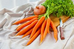 Bunch of fresh carrot and onion Royalty Free Stock Photography