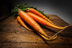Bunch of a fresh carrots Royalty Free Stock Photography