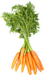 Bunch of fresh carrots Stock Photo