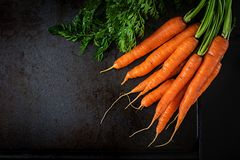 Bunch of fresh carrots with green leaves on dark background. Flat lay. Top view royalty free stock photography