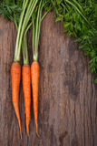 Bunch of fresh carrots with green leaves over wooden background Royalty Free Stock Photo