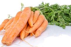 Bunch of fresh carrots Stock Photo