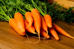 Fresh carrots on a wooden background. A bunch of fresh carrots with leaf on a wooden table ready to be cooked or raw for a salad royalty free stock photo