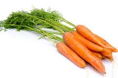 Bunch of fresh carrots with leaves Stock Image