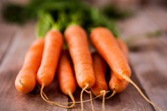Bunch of fresh carrots with leaves Stock Images
