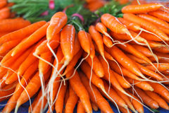 Bunch of fresh carrots on the market Royalty Free Stock Photography