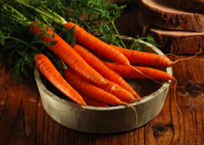 Bunch of fresh carrots Royalty Free Stock Photo