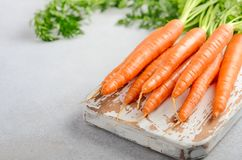 Bunch of fresh carrots on wooden cutting board. Bunch of fresh carrots on wooden cutting board on a gray concrete background, selective focus Stock Images
