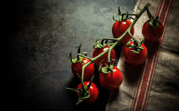 Bunch of fresh cherry tomatoes on the vine Stock Images