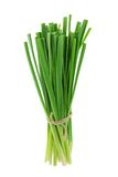 A bunch of fresh Chinese chives Royalty Free Stock Images