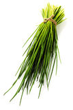 A bunch of fresh chives stock photo