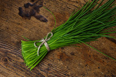 A bunch of fresh chives Royalty Free Stock Photography