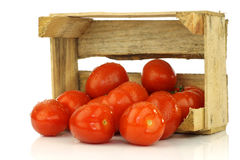 Bunch of fresh and colorful italian plum tomatoes Stock Photos