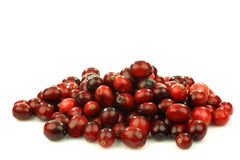 Bunch of fresh cranberries Royalty Free Stock Photography