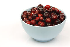 Bunch of fresh cranberries in a blue bowl Royalty Free Stock Image