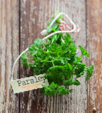 Fresh parsley with a name tag Stock Photography