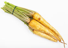 Bunch of fresh cut parsley roots Royalty Free Stock Images