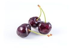 Bunch of fresh dark red cherries isolated on white Royalty Free Stock Photo