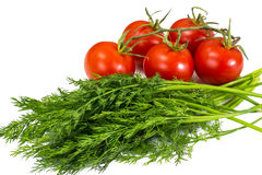 Bunch of fresh dill and branch of red tomatoes Royalty Free Stock Photos