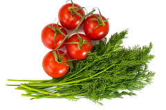 Bunch of fresh dill and branch of red tomatoes Stock Image