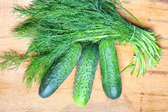 Bunch fresh dill and cucumbers on wooden table Royalty Free Stock Images