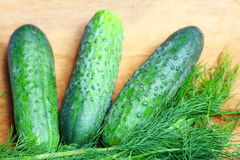 Bunch fresh dill and cucumbers on wooden table Stock Photography