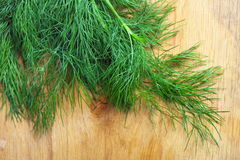 Bunch fresh dill herb on wooden table Royalty Free Stock Photography