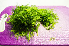 Bunch of fresh dill. On pink plastic cutting board Royalty Free Stock Image