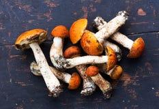 Bunch of Fresh Edible wild Mushrooms orange-cap Boletus (Leccinum aurantiacum) On an Old Black Wooden Table Royalty Free Stock Images