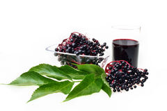 Bunch of fresh elderberries Royalty Free Stock Photo
