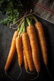 Bunch of fresh farm carrots with leaves Stock Photos