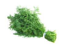 Fennel. Bunch of fresh fennel leaves isolated on white background royalty free stock photos