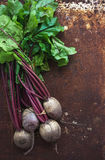 Bunch of fresh garden beetroot over grunge rusty Royalty Free Stock Photo