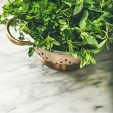 Bunch of fresh garden herbs in brass colander, square crop stock image
