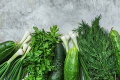 Bunch of Fresh Garden Herbs Greenery Parsley Dill Scallions Cucumbers on Grey Cement Concrete Metal Stone Background. Superfoods. Healthy Diet Vitamins Vegan royalty free stock image