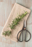 Bunch of fresh of garden rosemary on wooden table, rustic style, Stock Images